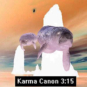 315 Karma Canon